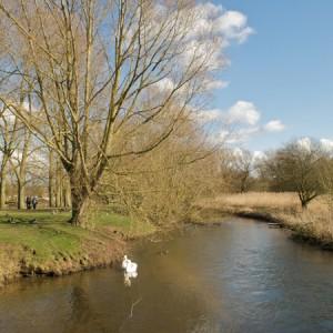 River Wensum Fakenham